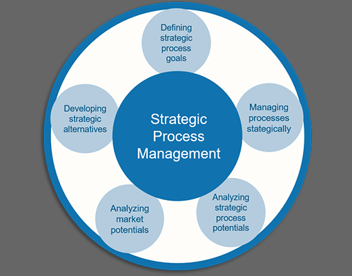 Certificate program Strategic Process Manager (TÜV)